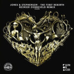 The First Rebirth Reinier Zonneveld remix album cover